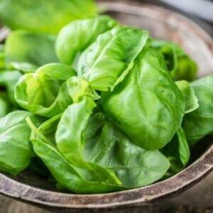 Всем нам необходимо знать — о хранении пищевых продуктов